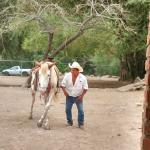 Rancho El Charro Ranch