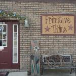 Primitive Thyme