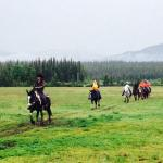 Yukon Horsepacking Adventures - Day Tours