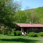 Cabin 5 in Spring