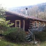 Cabin 5, A Log Cabin