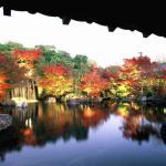 【好古園】紅葉会の情景