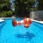 Nemo at Noosa Gardens