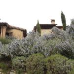 Photo of Belvedere delle Crete