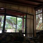 Morning view from the bed