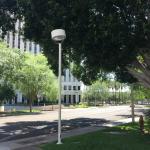 Photo de Hilton Garden Inn Phoenix Midtown