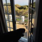 Foto de Manor on the Bay