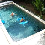 heated pool  chlorine free