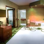 Business Jacuzzi Suite Bedroom