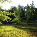 Puesta de sol en el parque