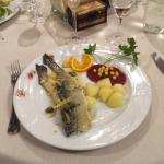 Food - Aubergine Photo