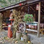 Niese's Maple Farm
