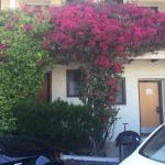 Photo de Casa Munras Garden Hotel & Spa