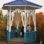 Arboretum NII of M.A. Lisavenko