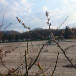 Trixi Ferienpark Zittauer Gebirge Foto
