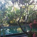 Beautiful poolside room.