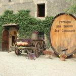 Photo of Fattoria San Donato