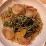 pan seared scallops over bacon and green pea risotto