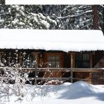 Meadow Lark Cabin in winter