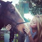 Juice my favourite horse -10% off for guest at hostel BOUTIQUE HORSETREKS