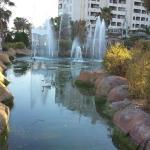 Jardín cerca del hotel