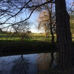 Ruisseau dans le jardin