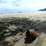 長閑なビーチ