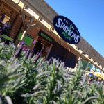 Welcome to Simpsons!