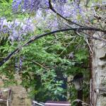 Foto de Le Jardin