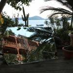 Dolphin Pension & Butik Hotel