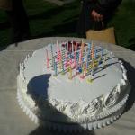 torta (panna vegetale)