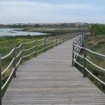 Bd walk up from beach