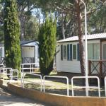 Photo of Kim's Camping Caravaning & Bungalow Park