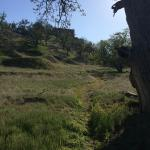 A small hiking trail