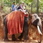 Thomson 'Elephant and Spice Tour', sahakari spice farm, Goa, India