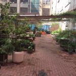 Very nice enclosed garden