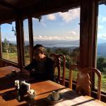 Foto de Vista Verde Lodge