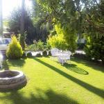Mirage Garden