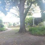 Panoramic view of property