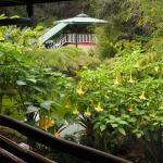 Foto de Chalet Kilauea