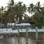 Foto de Pines and Palms Resort