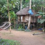 Shiva Garden Homestay