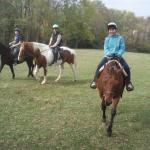 Rides are two hours long and include grooming and tacking up while you are getting acquainted.