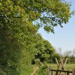 The Bridleways