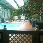 Foto de Comfort Inn Clifton Hill - Niagara Falls Hotel