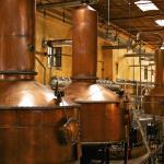 En la destilación es el único lugar donde podrás probar un tequila con 55° de alcohol.