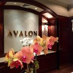 Avalon Hotel Front Desk