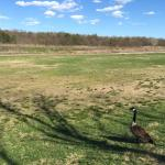 Holtsville Ecology Site Photo