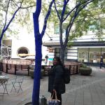 this is the blue trees right out side the mall