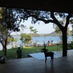 Foto de Deer Park Hotel